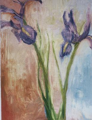 mbh-Irises